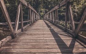 Картинка лес, мост, река, деревянный, старый