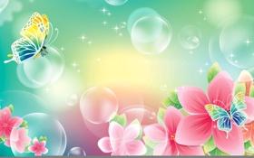 Обои цветы, коллаж, весна, баблчка