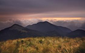 Картинка трава, горы, природа, фото, пейзажи, китай, вид