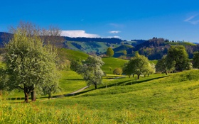 Картинка дорога, небо, трава, деревья, горы, холмы