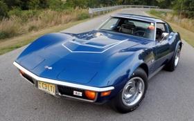 Обои дорога, лес, Corvette, шевроле, классика, 1970, передок