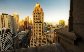Обои chicago, чикаго, америка, сша, здания