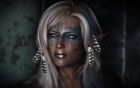 Обои девушка, лицо, волосы, игра, перья, маскировка, голубые глаза