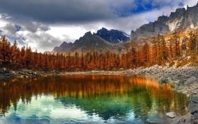 Обои осень, деревья, горы, озеро, Альпы, Италия, Parco Alpe Veglia-Devero