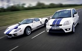 Обои дорога, белый, Ford, Форд, суперкар, кусты, передок