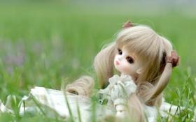 Обои платье, трава, сидит, кукла, игрушка, хвостики