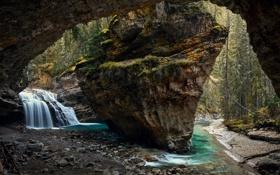 Картинка лес, природа, скала, река, водопад