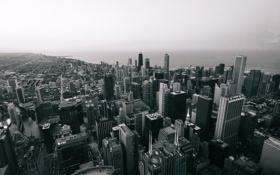 Обои Чикаго, Небоскребы, Высота, USA, Chicago, Хмуро
