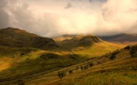Картинка облака, свет, деревья, склоны, тень, гороы
