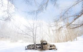 Картинка машина, снег, дерево
