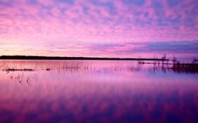 Обои закат, облака, небо, трава, озеро