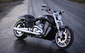 Картинка дорога, жажда, скорость, мотоцикл