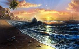 Картинка море, волны, закат, пальмы, побережье, парусник, чайка