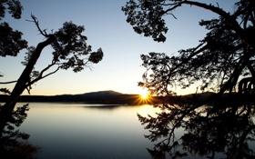 Картинка море, деревья, пейзаж, закат, природа, гладь, река