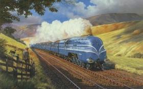 Картинка собаки, природа, дым, рельсы, вагоны, Поезд, локомотив