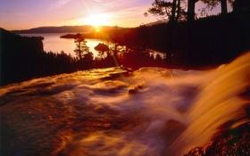 Картинка лес, природа, озеро, река, утро