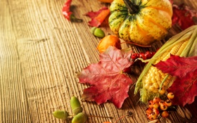Картинка осень, листья, ягоды, дерево, кукуруза, урожай, тыква