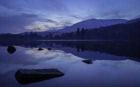 Обои Coniston, лес, горы, сумерки, дымка, озеро, England