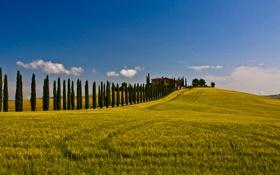 Картинка дорога, поле, небо, след