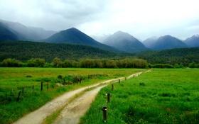 Картинка дорога, зелень, трава, деревья, горы