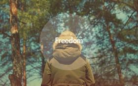 Обои Freedom, Свобода, настроение