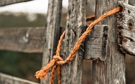 Картинка макро, забор, верёвка