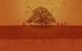 Обои осень, деревья, дерево, минимализм, осенние обои