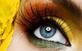 Обои глаз, ресницы, тени