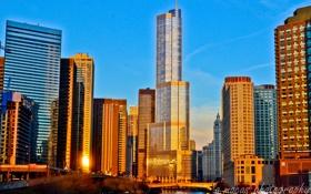 Картинка здания, небоскребы, америка, чикаго, Chicago, сша, высотки