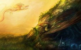 Обои трава, драконы, меч, холм, арт, кости, черепа