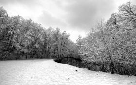 Обои зима, снег, серость, Winter, речька
