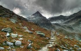 Картинка трава, горы, тучи, камни. туман