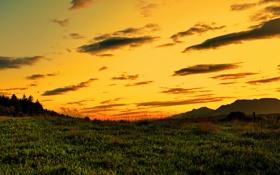 Обои небо, трава, природа, пейзажи, вечер, закат солнца