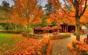 Обои листья, Заальбургзидлунг, осень, деревья, Германия, беседка, парк