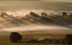 Картинка дорога, поле, небо, деревья, туман, холмы