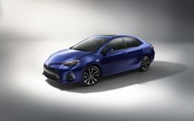 Картинка белый фон, Toyota, тойота, королла, Corolla