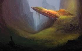 Картинка птицы, заросли, человек, корабль, арт, каньон, ущелье