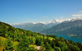 Обои деревья, горы, река, Швейцария, домики, Beatenberg
