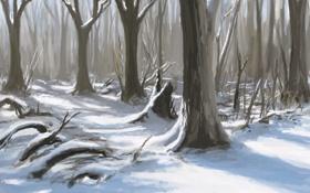 Картинка зима, лес, снег, деревья, природа, арт, тени