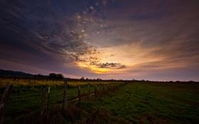 Картинка небо, трава, закат, забор