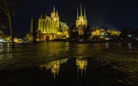 Картинка ночь, отражение, Германия, площадь, собор, Тюрингия, Эрфурт