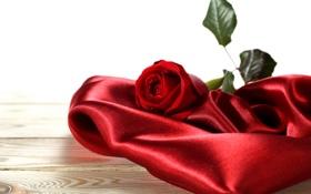 Обои сердце, любовь, свеча, цветы