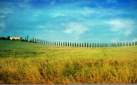 Картинка поле, небо, облака, деревья, дом, Италия, ферма