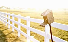 Обои поле, солнце, фон, обои, настроения, забор, поля