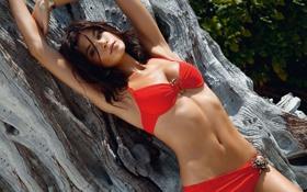 Картинка листья, красное бикини, Jenna Pietersen, позирует, брюнетка, лежит, дерево