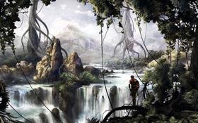 Картинка деревья, корни, река, скалы, человек, водопад, джунгли