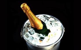 Обои капли, бутылка, лёд, ведро, шампанское