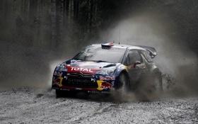 Обои Гонка, Ситроен, Грязь, Citroen, Брызги, DS3, WRC