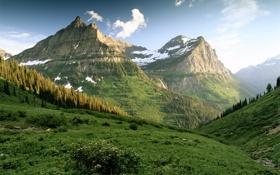 Обои горы, зелень, лесок, склоны, утро