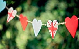 Обои зелень, фокус, сердца, веревка, размытость, сердечки, боке